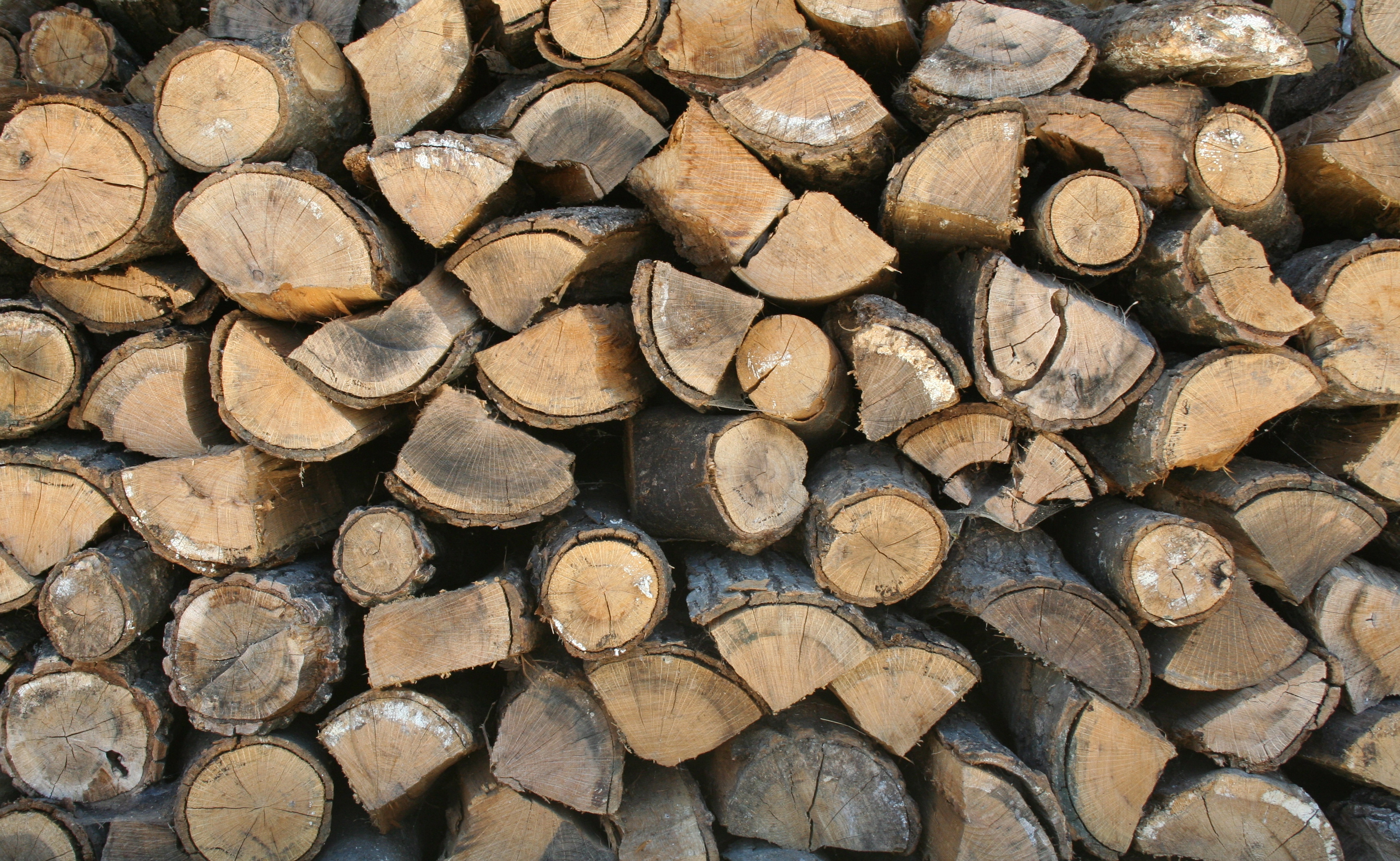 Keep logs dry this winter best way to store bury hill
