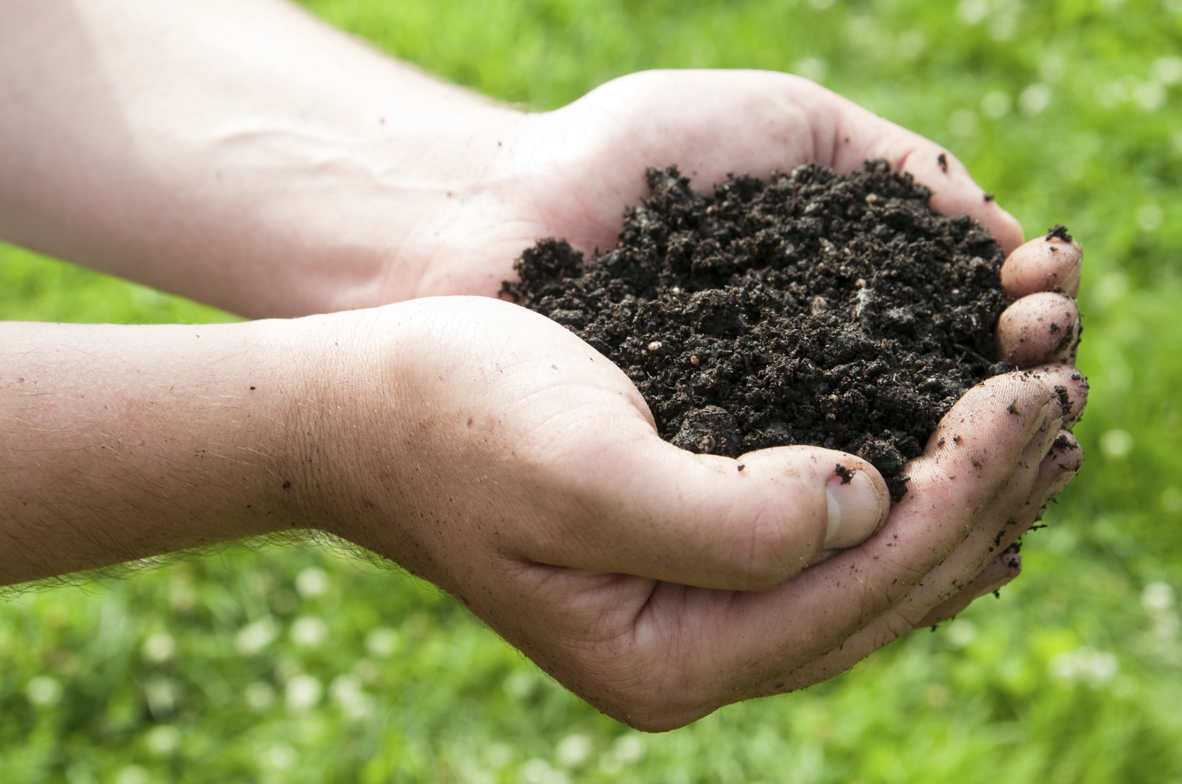 What is topsoil what is topsoil used for bury hill blog for What does soil contain