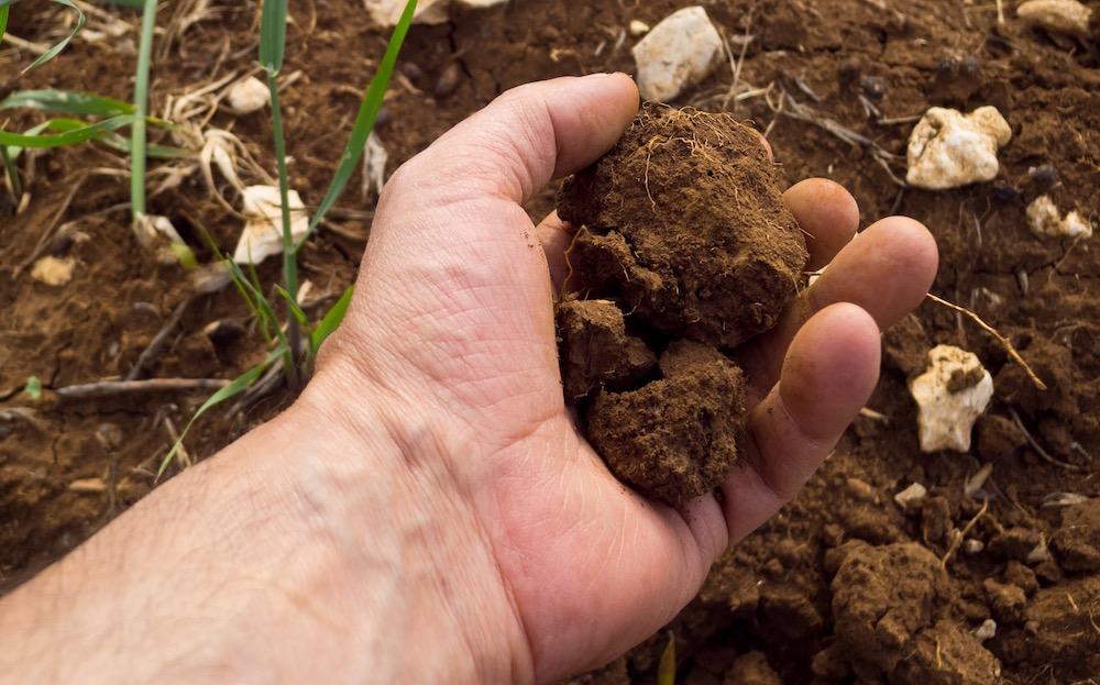 Understanding different kinds of soil