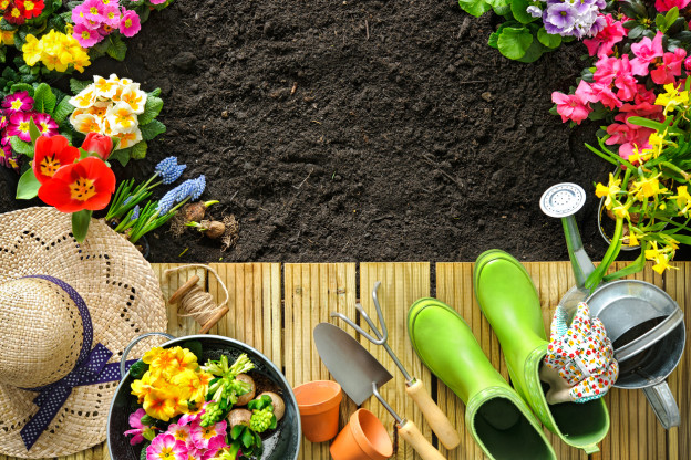 5 Top Gardening Tips For Beginners | Bury Hill