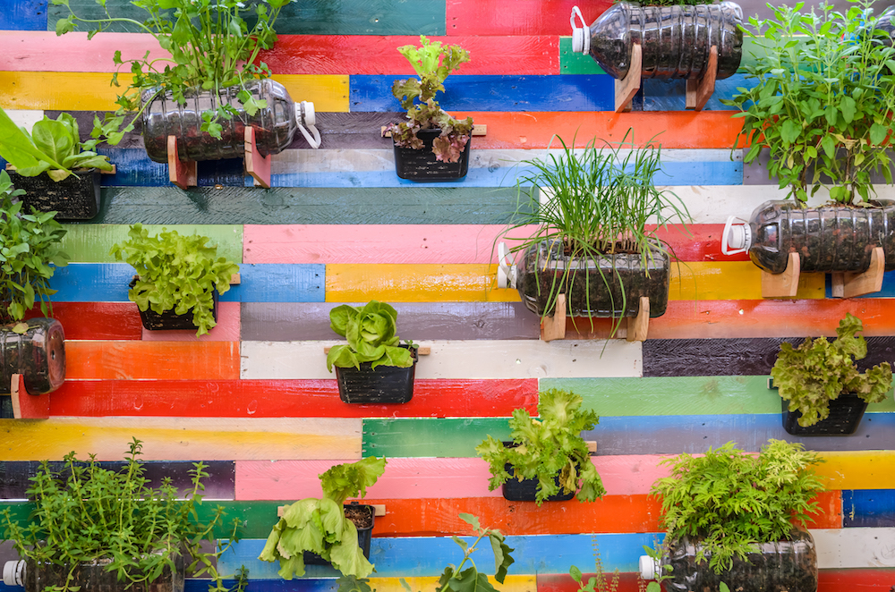Inspiration for your garden - colourful garden wall